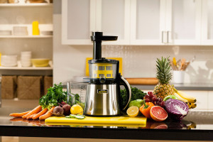 Manual Juicer and Electric Juicer Differences