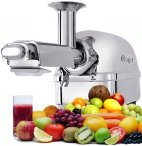 Super Angel Twin Gear Juicer Review