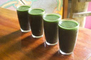 Best Juice Recipes For Diabetics